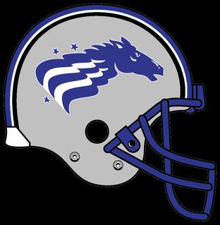 Baltimore_Stallions_helmet_1994-1995.png