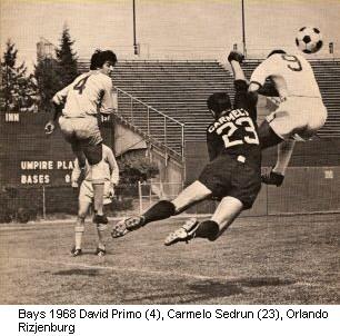 Bays 68 Goalie Back Carmelo Sedrun.jpg