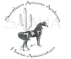 Southern Arizona Arabian Horse association Show (SAAHA) - Southern Arizona Arabian Horse Shows: Southern Arizona Arabian Horse Association Horse Show is a wonderful introductory show for first time riders and for new show parents. It is low key, while still creating a fun competitive show atmosphere… without the stress of a big show.