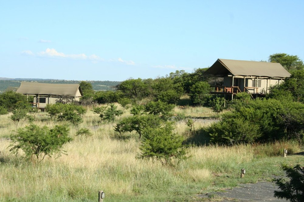 Springbok Lodge.jpg
