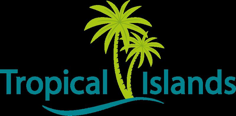 2017_TI_logo-rs.png