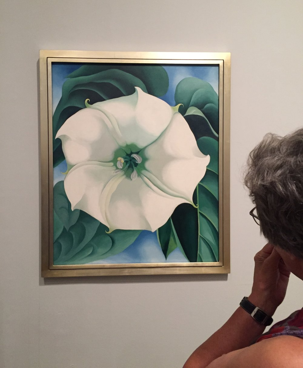A visitor contemplates the most expensive work of art ever made by a woman;  Jimson Weed/White Flower No. 1 , Georgia O'Keeffe, 1932 sold at auction for $44.4m in November 2014.