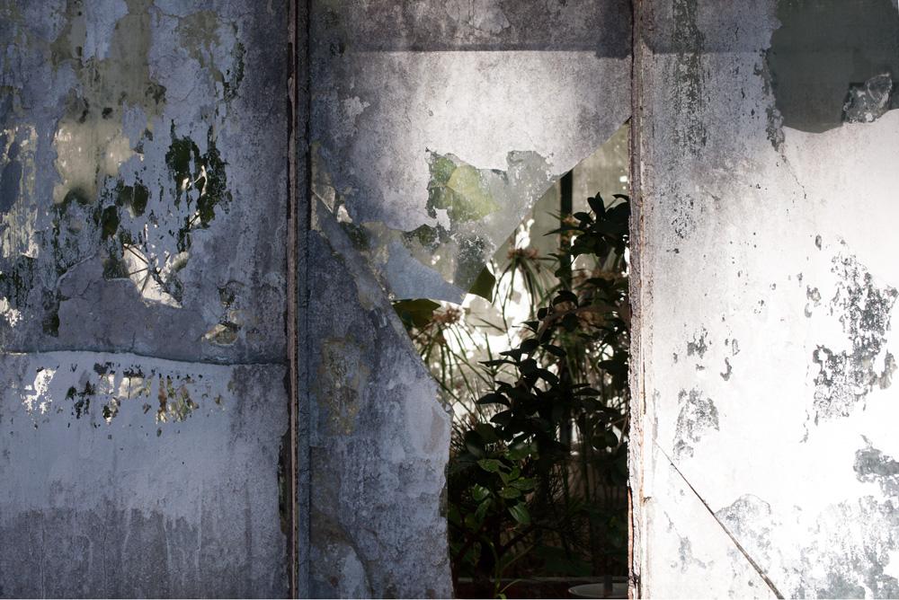 Serre du jardin tropical de Belèm