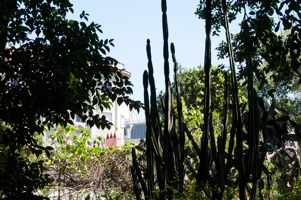 Jardin botanique de l'université