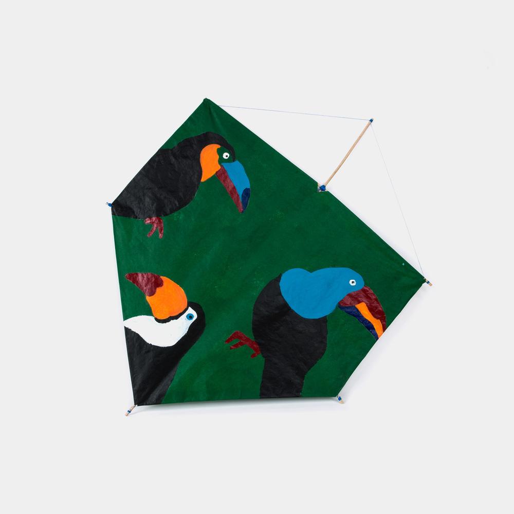 Cerf-volant brésilien - Toucanas -Domitille Martin