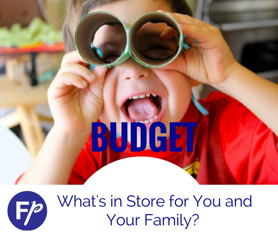 Budget 2019 Tax Calculator! — Financialplanner ie