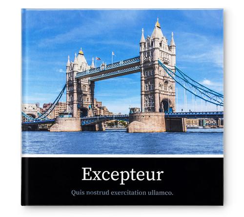 Excepteur