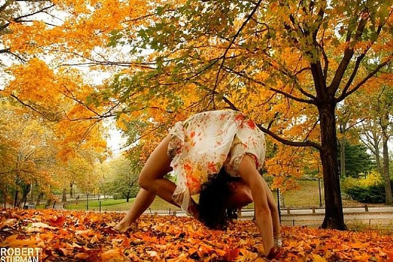 yoga-automne.jpg