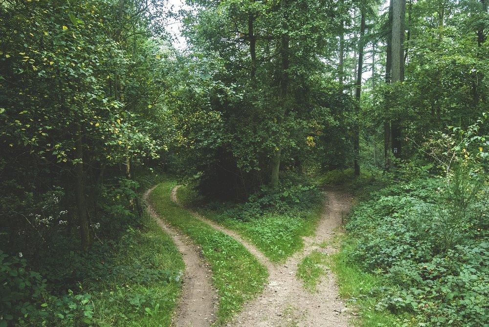 Choix-carrefour-choose-positivity