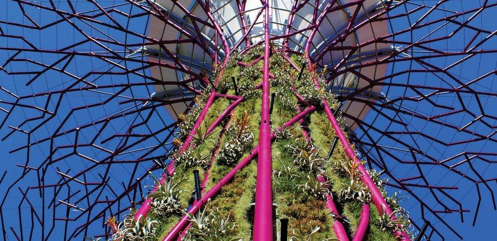 I.E 4 SupertreesSNG233_N515-carousel.jpg