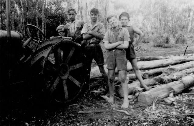 Hauling logs c1955.jpg