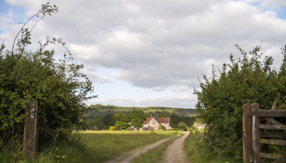 landscape-GF-1400x800.jpg
