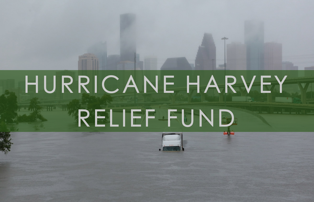 HARVEYRELIEF.png