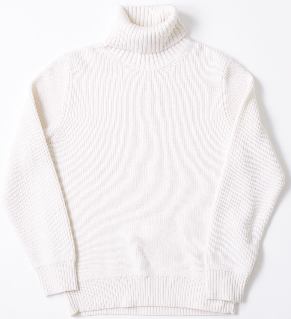 Tomorrowland Turtleneck Sweater, $650