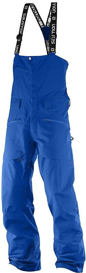 Salomon QST Charge GTX® 3L Pants, $500