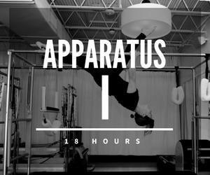 Apparatus I