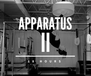 Apparatus II