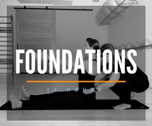 pilates teacher training course module houston michigan reformer mat pilates