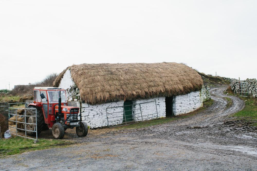 Ireland62_58_2000.jpg