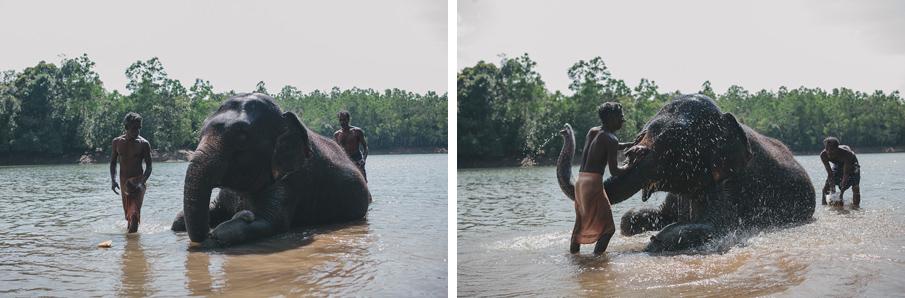 Kerala-38_o.jpg