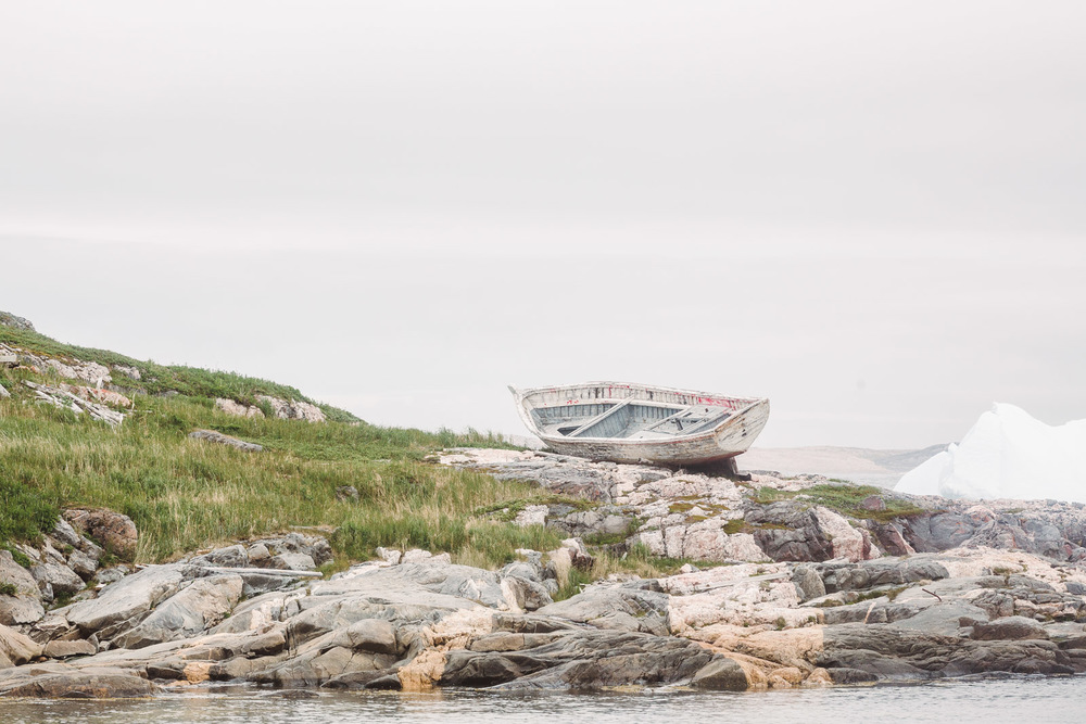 Newfoundland-21.jpg