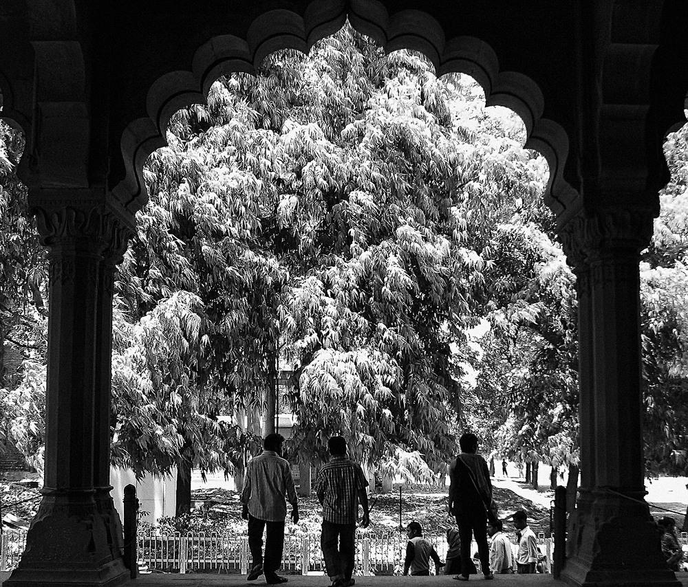 Delhi, 2012