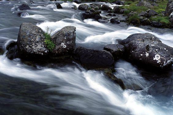 Sóley Organics: Pure Water.