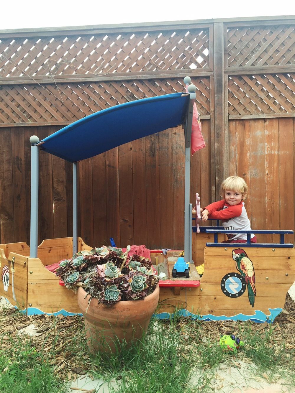 Jimmy's pirate ship playhouse, next to some California succulents.
