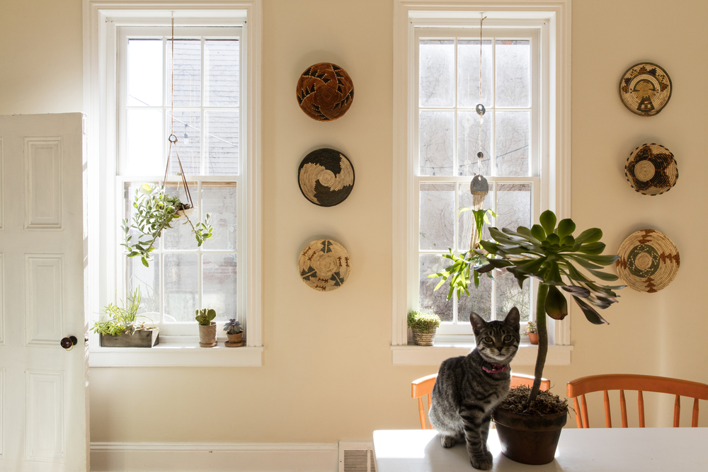 A basket collection hangs on the light-soaked walls, and some friendly greenery in the kitchen.