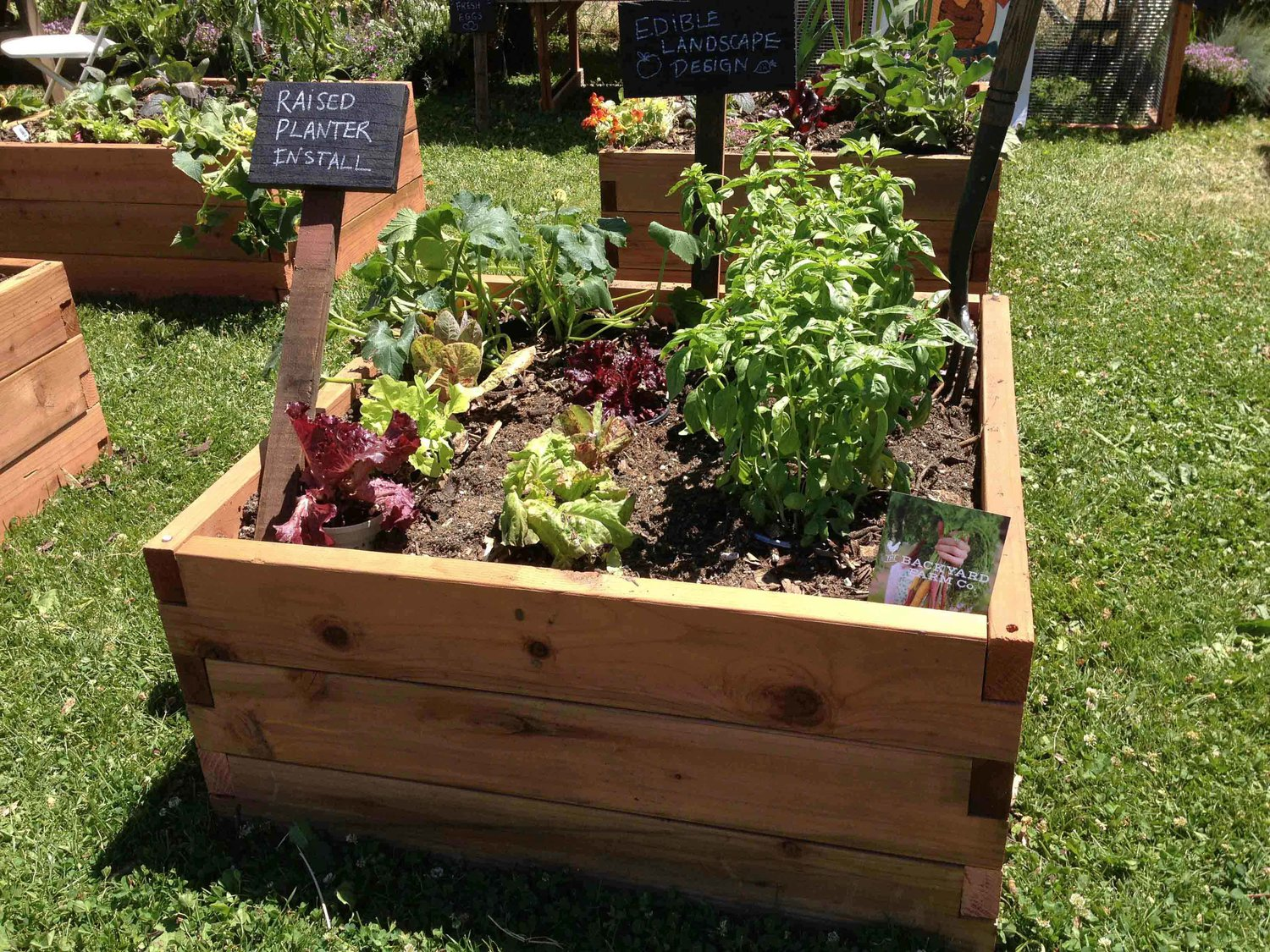 Redwood Raised Beds — Hygge Culture
