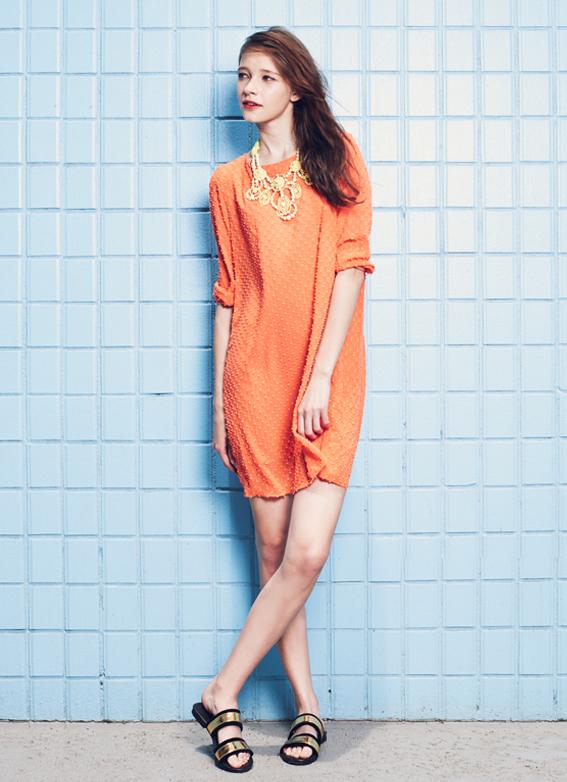 Chiffon Textured Dress