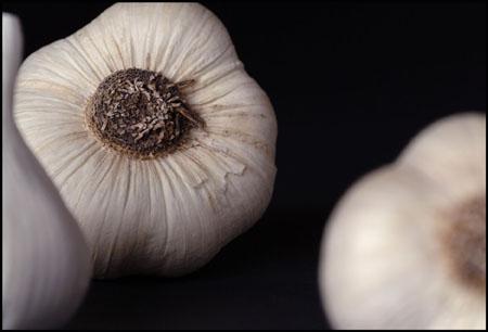 Garlic_1_.jpg