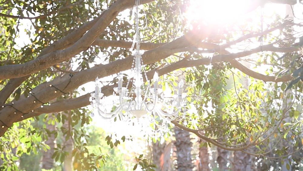 Screen Shot 2014-11-07 at 8.20.20 AM