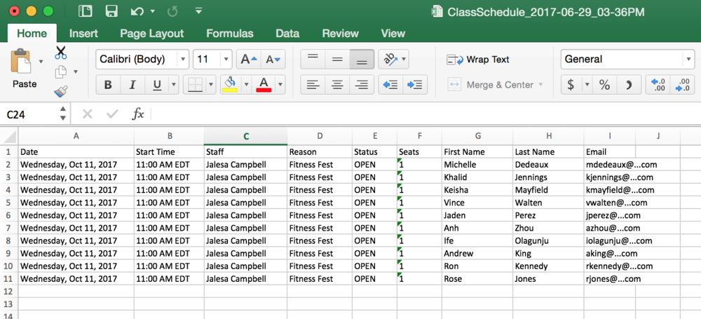 Sample exported MS Excel attendees list