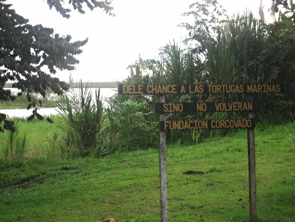 Tortuga Sign Costa Rica