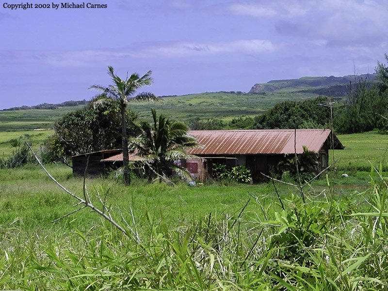 A shack on the island of Moloka'i