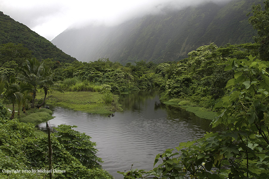 Few people walk the steep road to the bottom of the Waipio Valley.