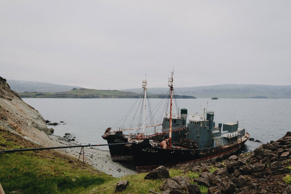 HARD TO PORT WHALER WATCHING CAMPAIGN 2016 - ICELAND