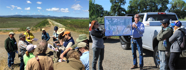 Participants had four post-conference fieldtrips from which to choose, three of which were modified to accommodate the still-high waters in the Sacramento region. Shown here are trips to the North Bay Tidal Marsh (left) and Cosumnes Floodplain (right).