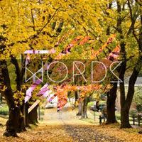 Words -Single | 2017  Zie Rosin