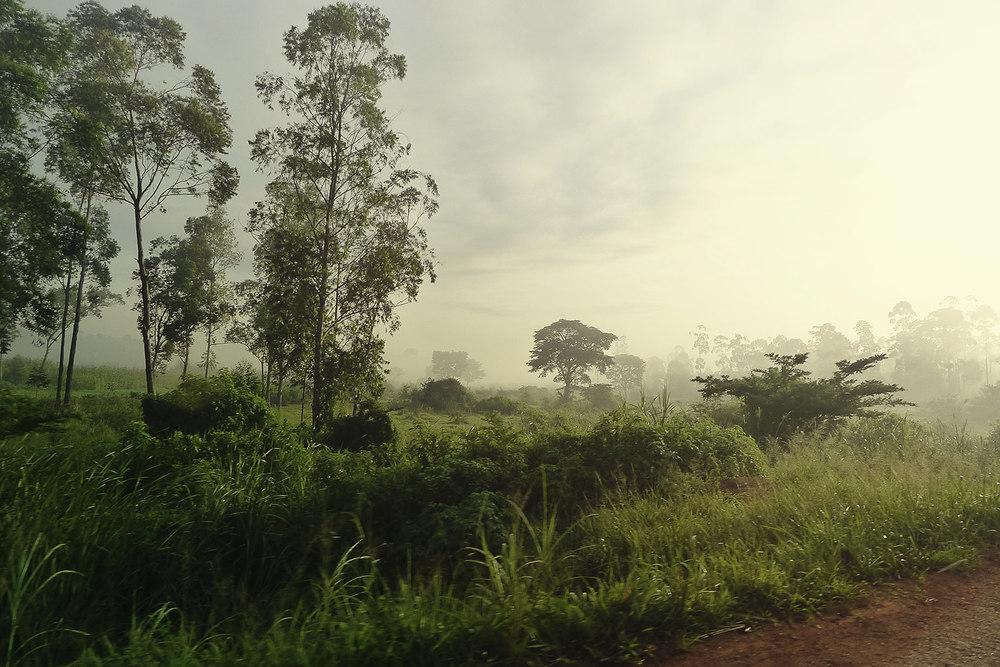 P1060691_landscape.jpg