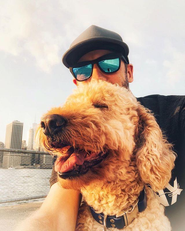 My human 😍 and sometimes social media manager. ▪️ ▪️ ▪️ #dood #labradoodle #doodle #doodlife #doods #doodlebug #doodles2love #doodlelife #dogsofinstagram #doodlesofinstagram #dailyfluff #weeklyfluff #nycdoodles #brooklyndoodles #instadog #nyc #cobblehill #brooklyn