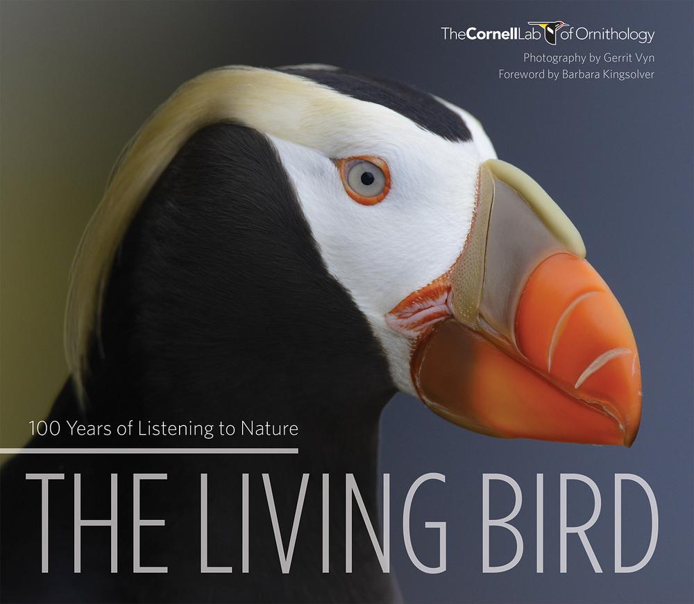 TheLivingBird_WEB_MoreOpacity.jpg