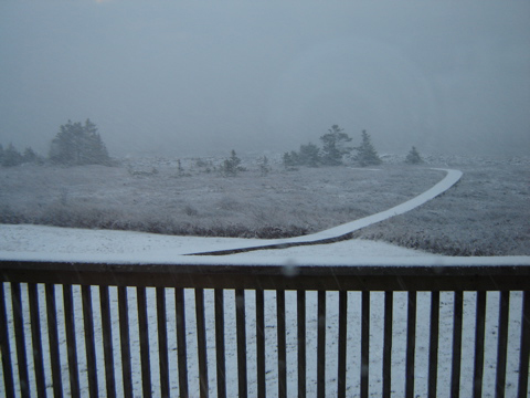 Boardwalk from deck winter.jpg