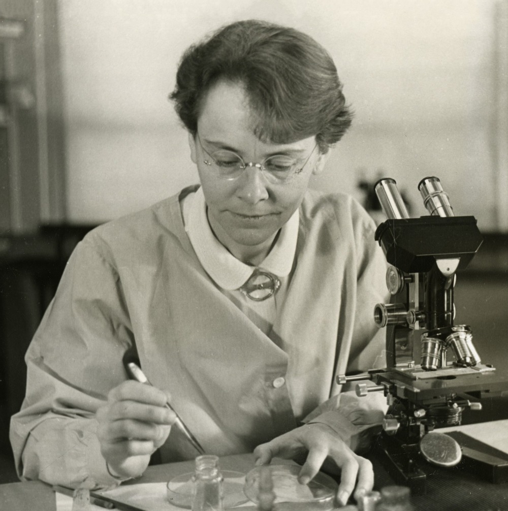 Barbara McClintock, the misunderstood cytogeneticist Smithsonian Institution Archives/Wikimedia Commons (public domain)