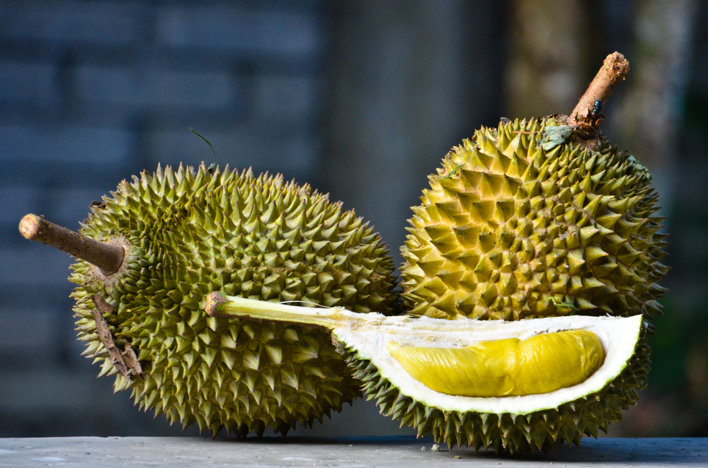 Some people relish the potent flavour of the durian, whereas others are repulsed by it.   Mohd Hafizuddin Husin/Flickr  (CC BY-NC-ND 2.0)
