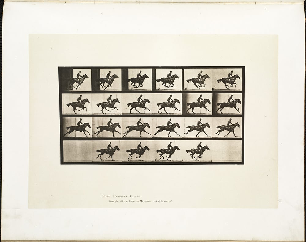 Eadweard Muybridge and Leland Stanford's photographic experiment to capture the motion of a galloping horse became the first motion picture in 1880.   Boston Public Library/Flickr  (CC BY 2.0)