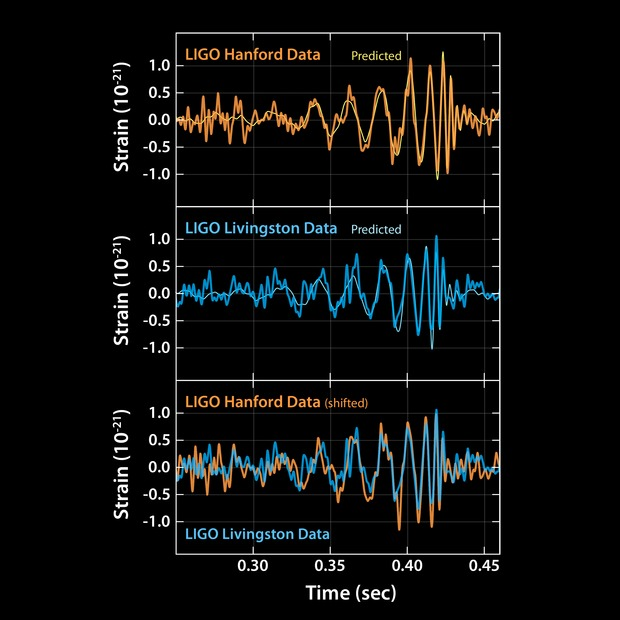 The signal LIGO received matches up remarkably well with the predicted curve of a black hole merger using Einstein's equations. Caltech/MIT/LIGO Laboratory (public domain)