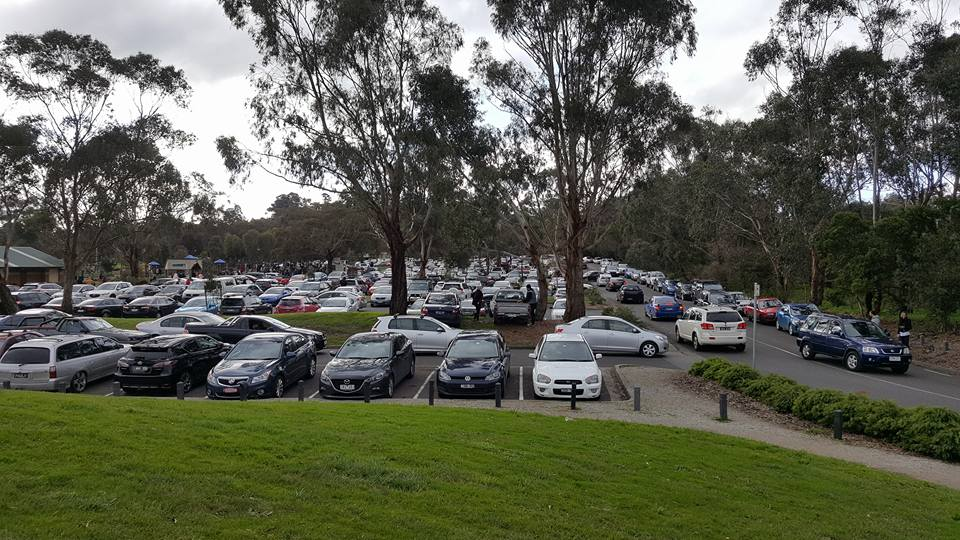 Keen Pokémon masters flock to Lilydale Lake, a popular hotspot for Pokémon hunting. The lake saw over 4,000 visitors in one weekend — and 44 parking fines. © Trung Ly (used with permission)