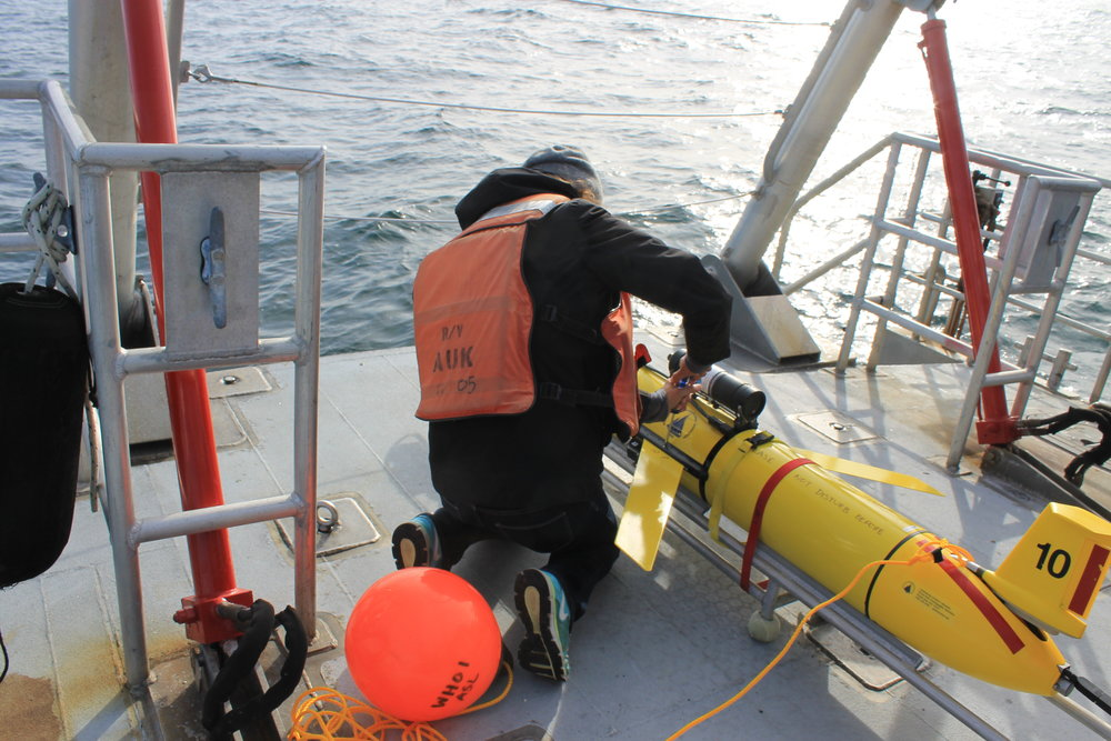 A researcher aboard the Auk prepares a Slocum glider to launch. © Claudia Geib.